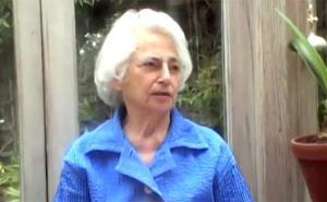 Elizabeth Spillius谈精神分析